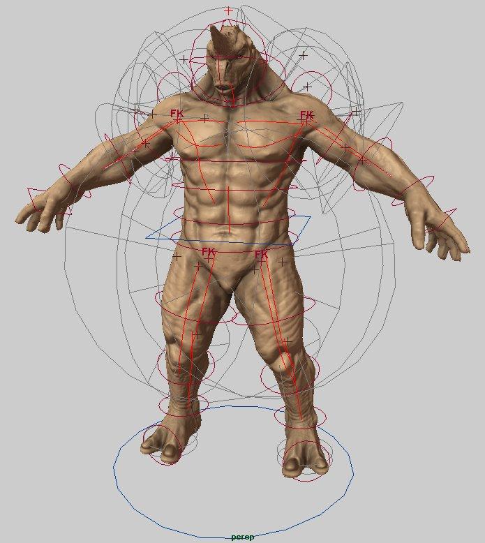 David Corral The Way Maya Muscle System
